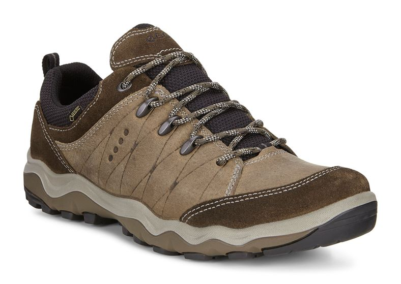 ULTERRA MEN'S (Marrone)