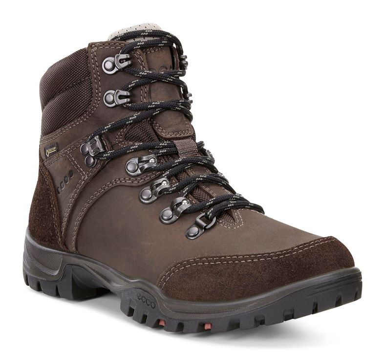 XPEDITION III LADIES (Brown)