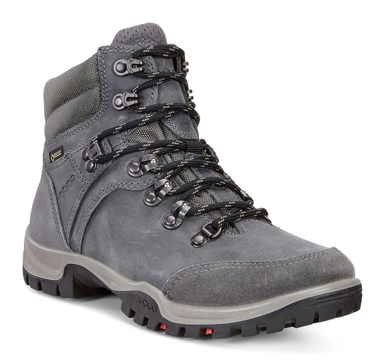 XPEDITION III LADIES (Gris)