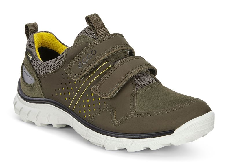 BIOM TRAIL KIDS (Green)