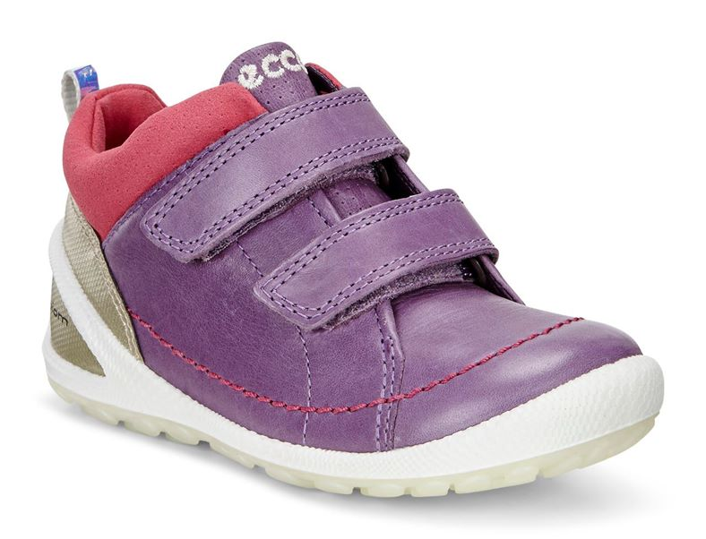 LITE INFANTS (Purple)