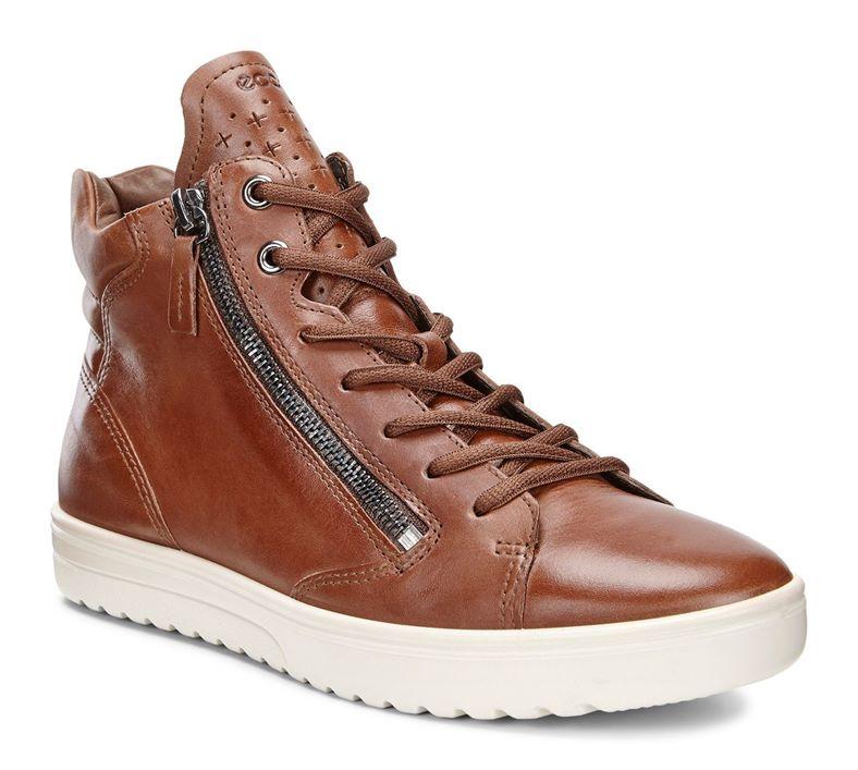 FARA (Brown)