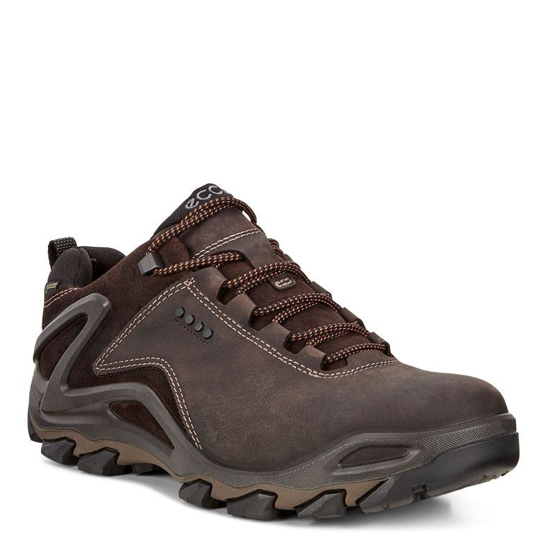 TERRA EVO (Brown)