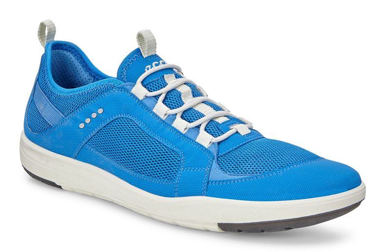 LAGOON MEN'S (Blue)
