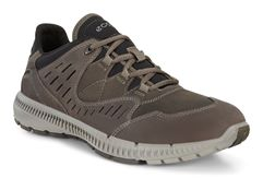TERRAWALK MEN'S