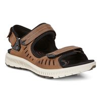TERRA SANDAL (Brown)