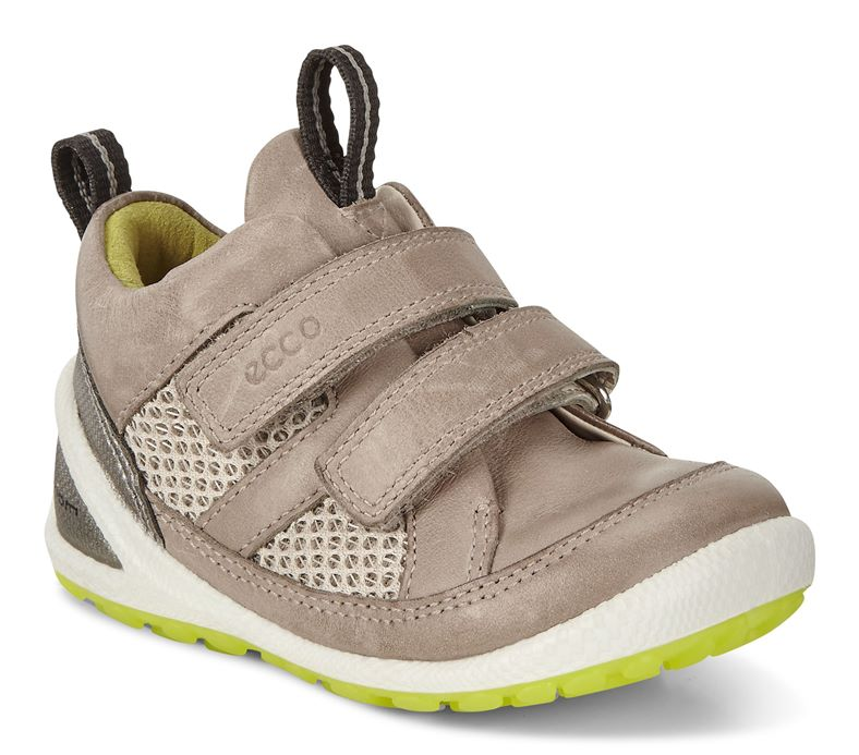 LITE INFANTS (Cinzento)