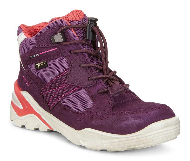 BIOM VOJAGE (紫色)
