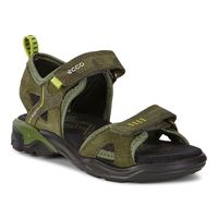 BIOM RAFT (Green)