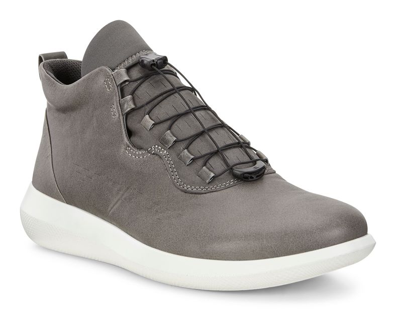 SCINAPSE MEN'S (Grey)