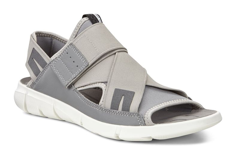 INTRINSIC SANDAL MEN'S (Gris)