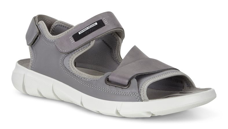 INTRINSIC SANDAL MEN'S (Grey)