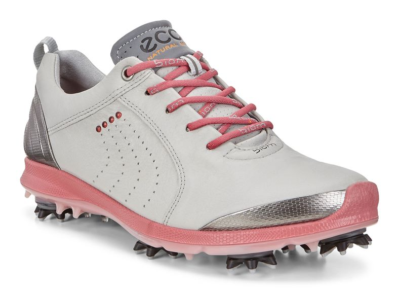 WOMEN'S GOLF BIOM G 2 (رمادي)