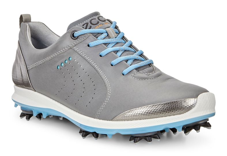 WOMEN'S GOLF BIOM G 2 (Grey)
