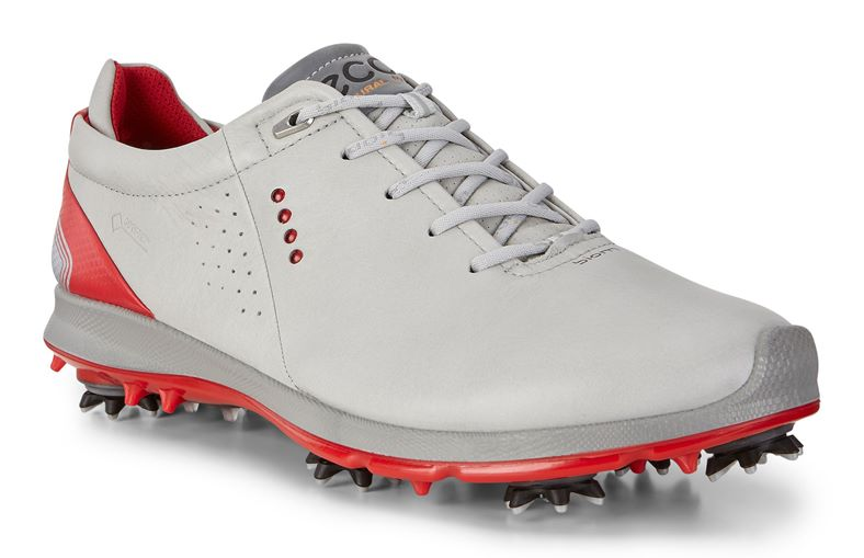 MEN'S GOLF BIOM G 2 (Grey)