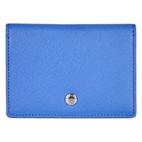 Iola Card Case (Blue)