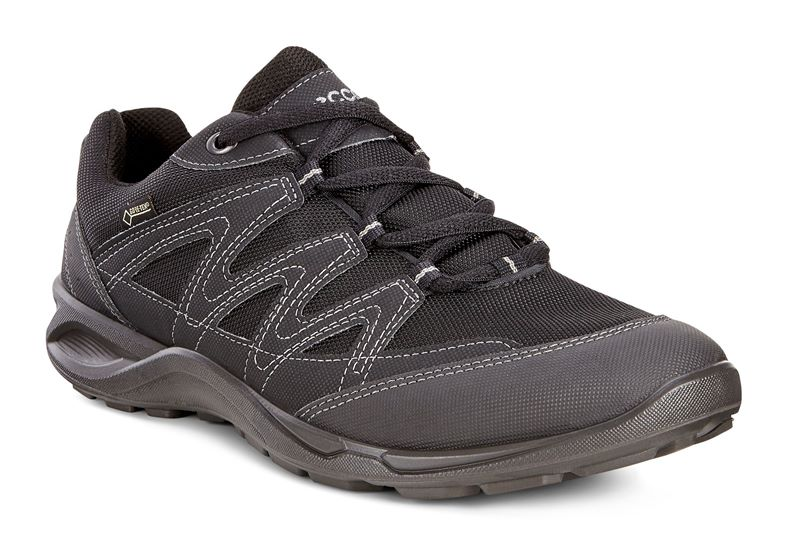 TERRACRUISE LT W (Negro)