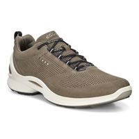 BIOM FJUEL MEN'S (Brown)