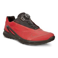 BIOM OMNIQUEST (Red)