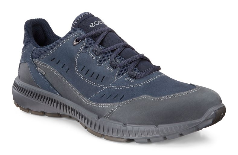 TERRAWALK M (Blue)