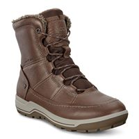 TRACE LITE (Brown)