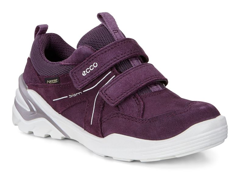 BIOM VOJAGE (Purple)