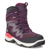 SNOW MOUNTAIN (Purple)