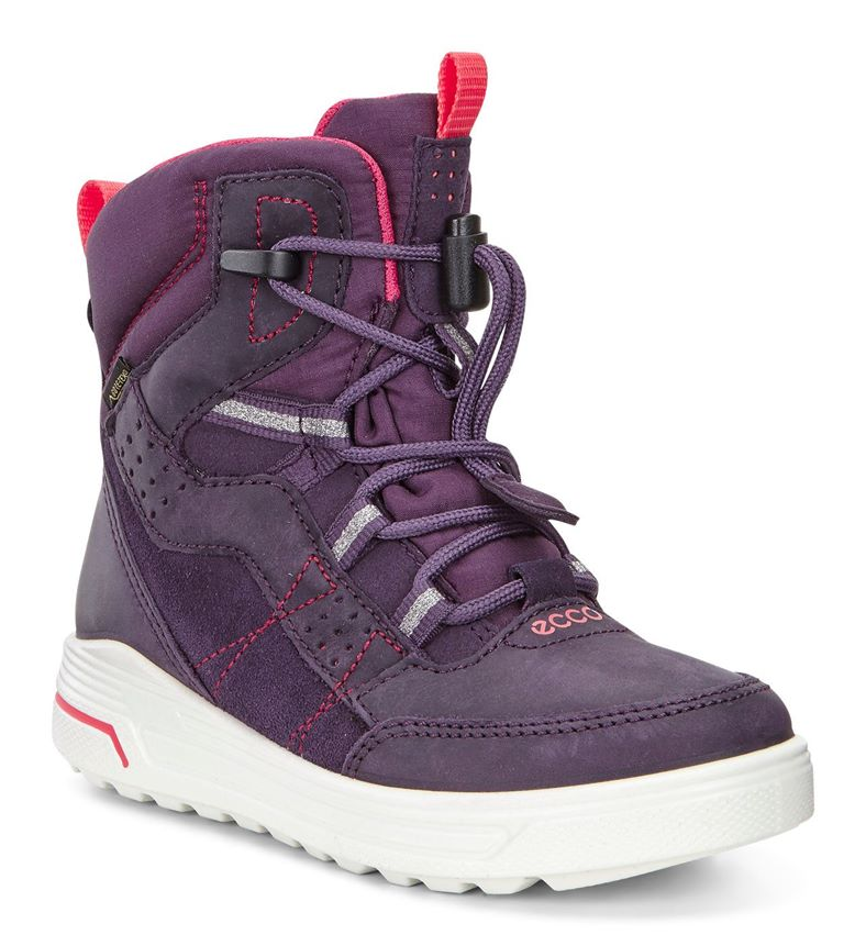 URBAN SNOWBOARDER (Purple)