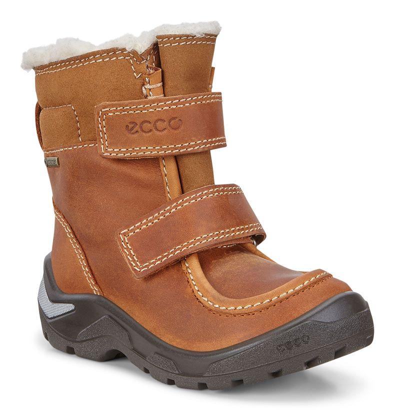 SNOWRIDE (Brown)