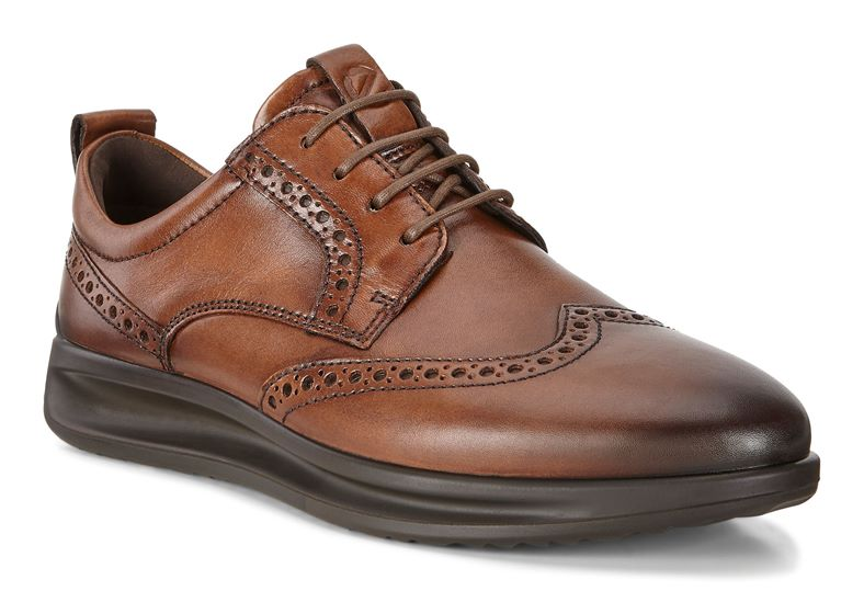 VITRUS AQUET (Brown)