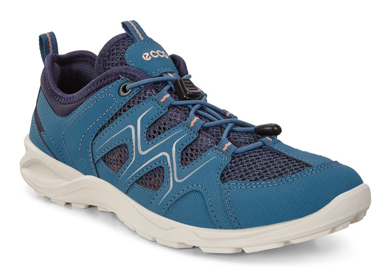 TERRACRUISE LT W (Blue)