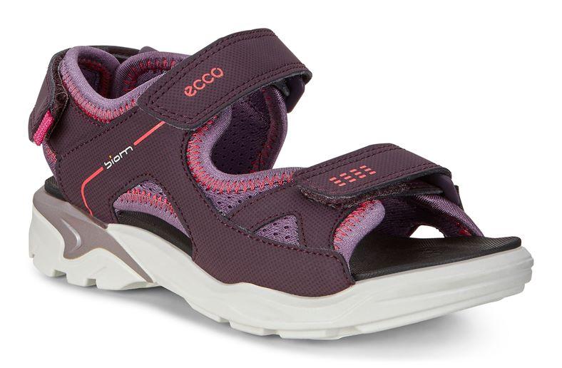 BIOM RAFT (Purple)