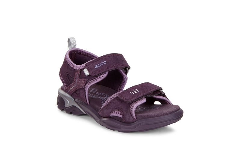 BIOM RAFT (Purple)