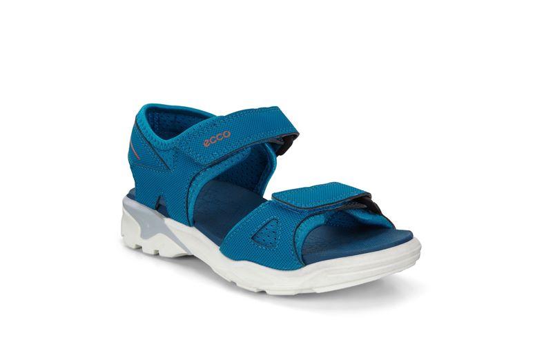BIOM RAFT (藍色)