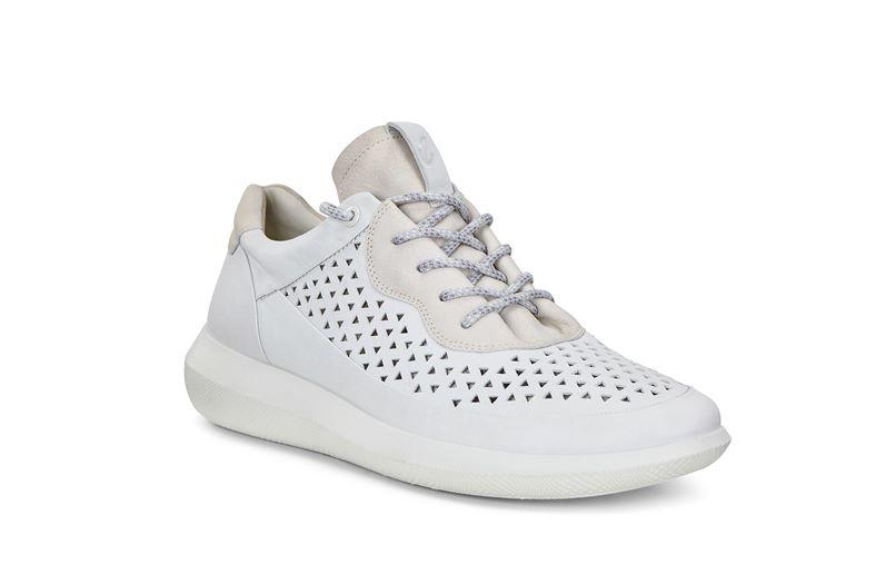 SCINAPSE M (White)