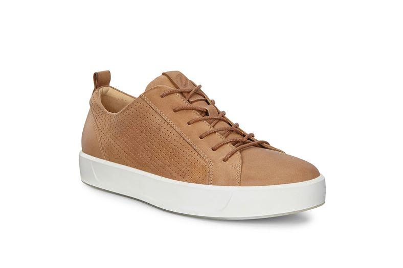 SOFT 8 M (Brown)