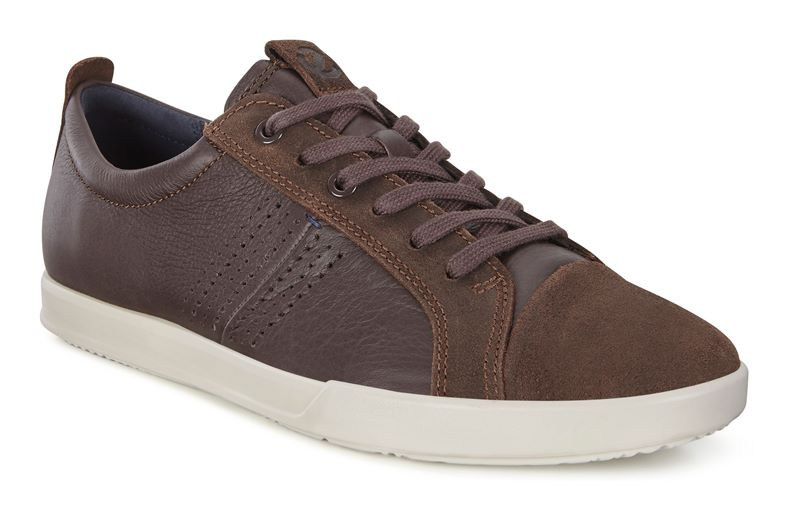 COLLIN 2.0 (Brown)