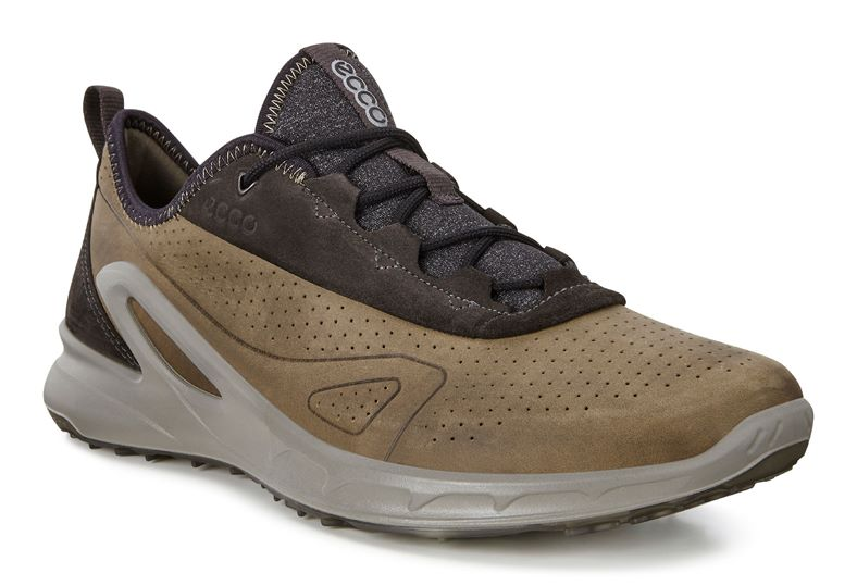 BIOM OMNIQUEST (Brown)