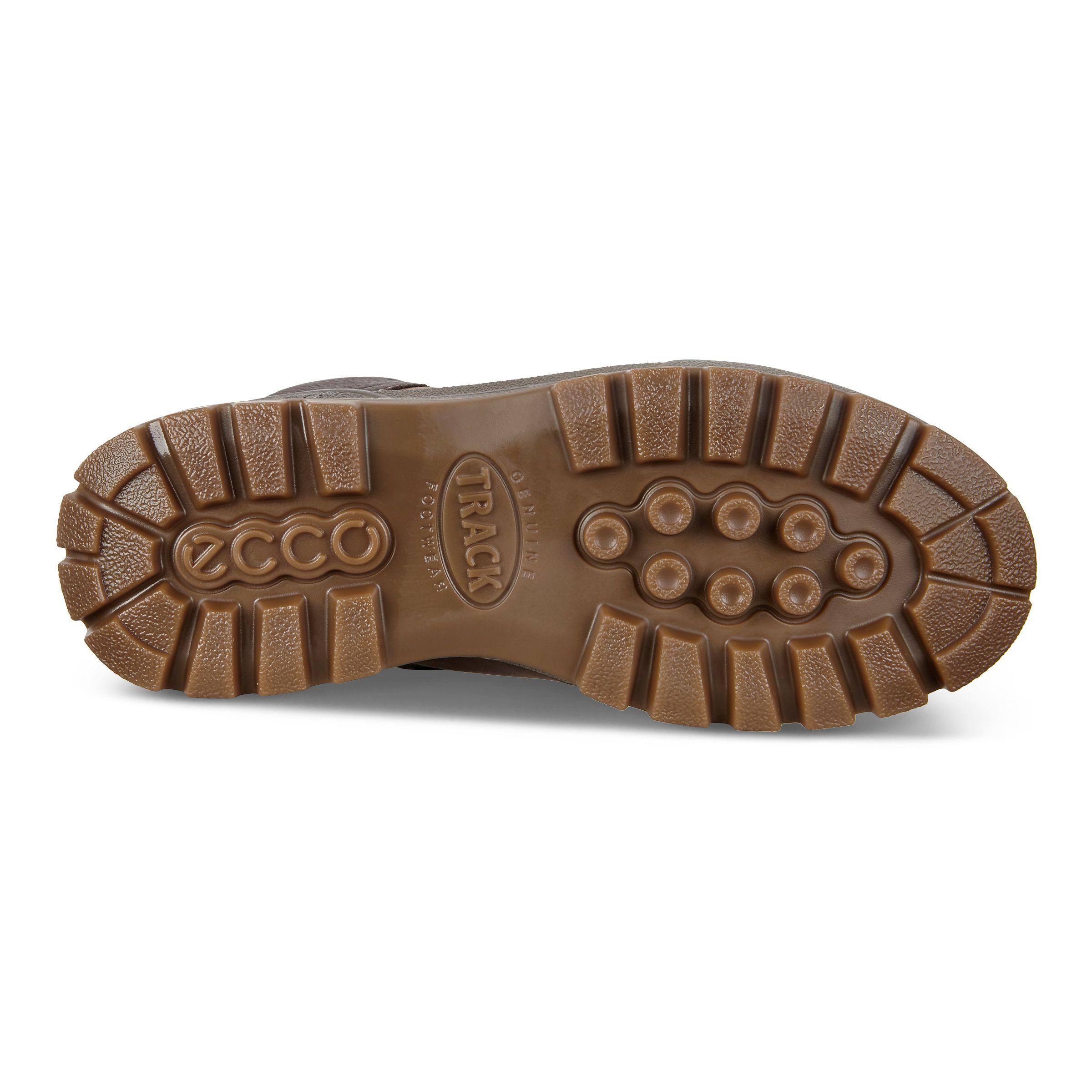 Choose SZColor ECCO Men's Track 25 Hydromax Hiking Shoe