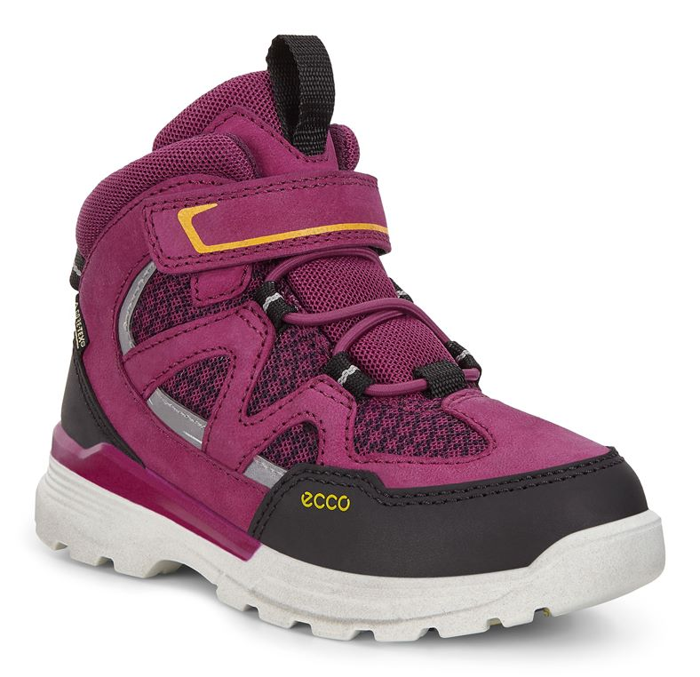URBAN HIKER (Purple)