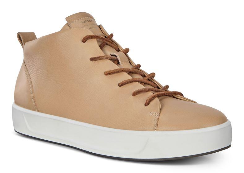 SOFT 8 W (棕色)