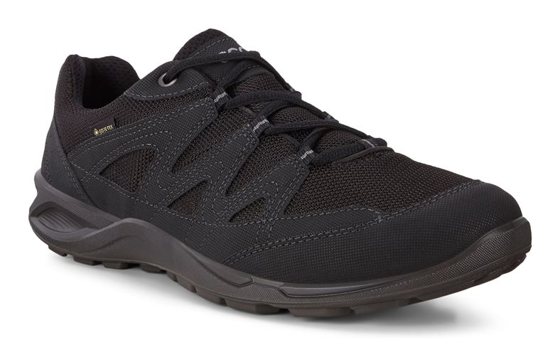 TERRACRUISE LT M (Black)