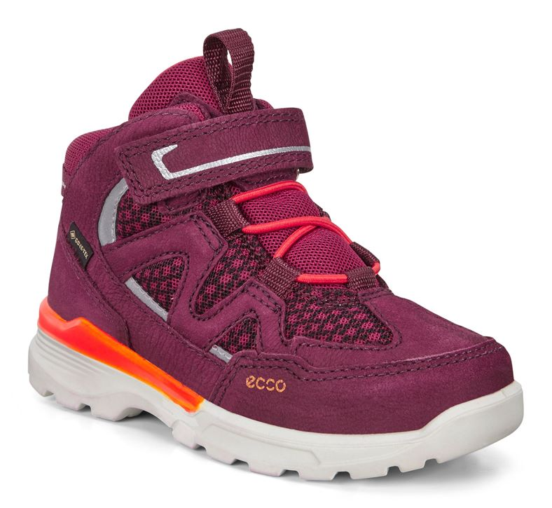 URBAN HIKER (Roxo)