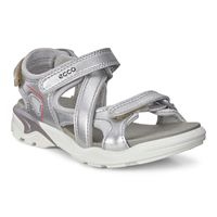 BIOM RAFT (Metallic)
