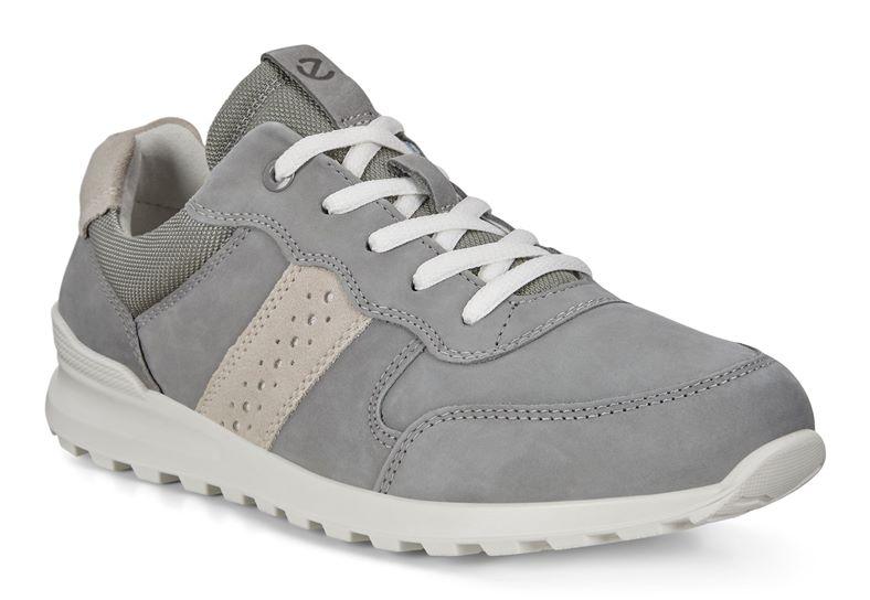CS20 W (Grey)
