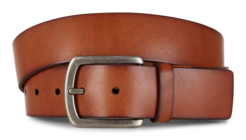Allan Jeans Belt (Brown)