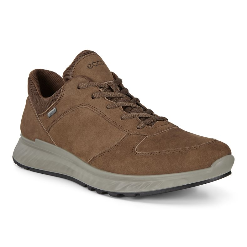 EXOSTRIDE M (Brown)