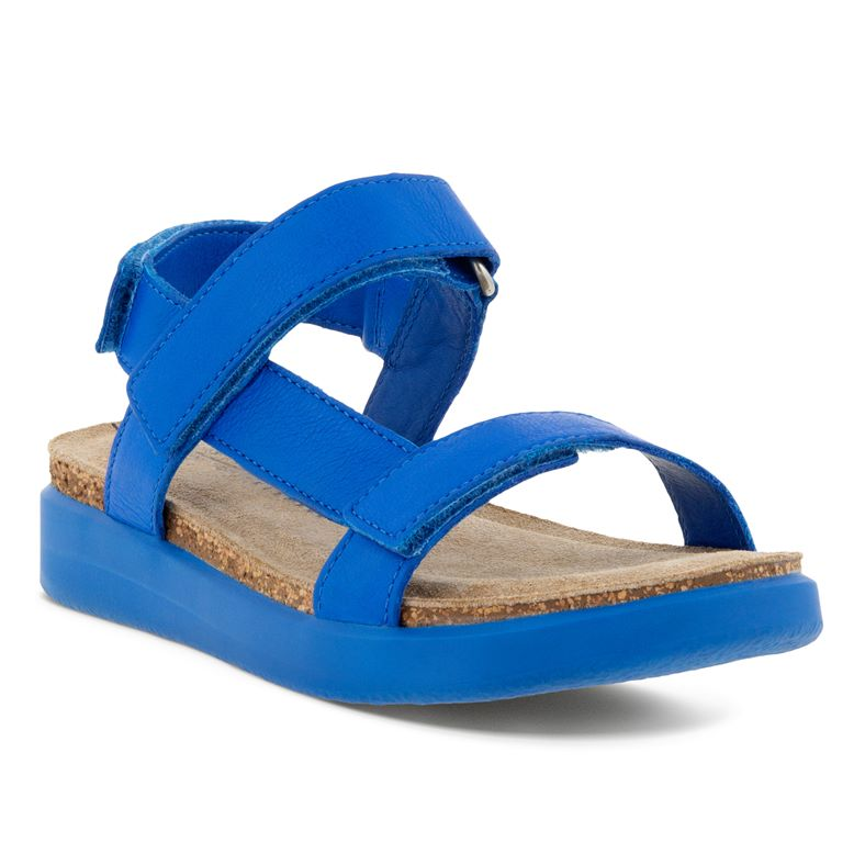 FLOWT K (Blue)